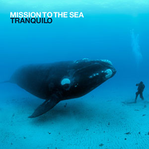 Mission to the Sea - Tranquilo